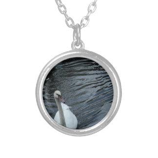 Collar Plateado Cisne blanco