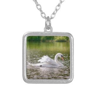 Collar Plateado Cisne blanco en un lago
