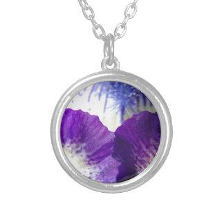 Collar Plateado Despliegue del iris