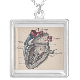 Collar Plateado Diagrama humano antiguo de la anatomía del corazón