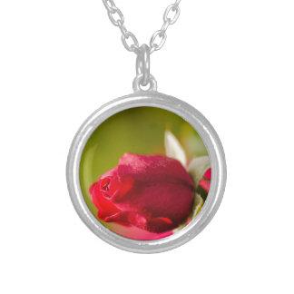 Collar Plateado Diseño ascendente del cierre del rosa rojo
