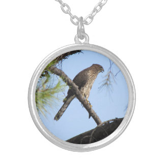 Collar Plateado El halcón del tonelero