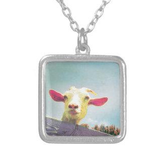 Collar Plateado El más grande de todos cabra espigada rosada del
