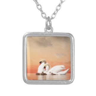 Collar Plateado Familia del cisne