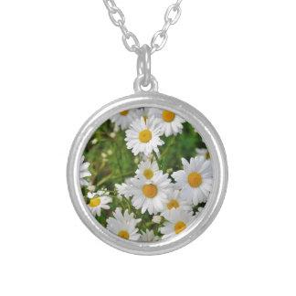 Collar Plateado Flor de la margarita blanca