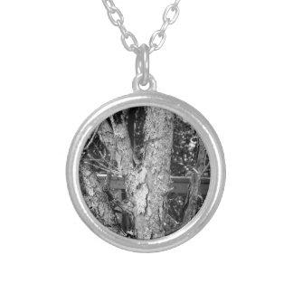 Collar Plateado Foto blanco y negro de la naturaleza del árbol