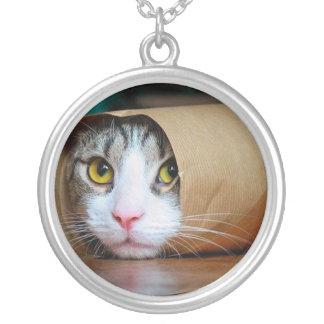 Collar Plateado Gato de papel - gatos divertidos - meme del gato -