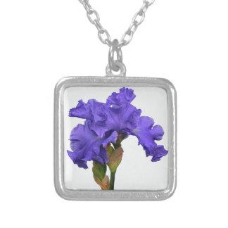 Collar Plateado Iris púrpura