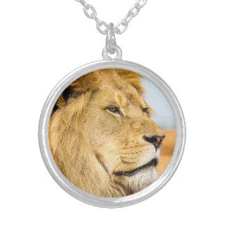 Collar Plateado León grande que mira lejos