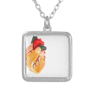 Collar Plateado Modelo humano del corazón en el fondo blanco