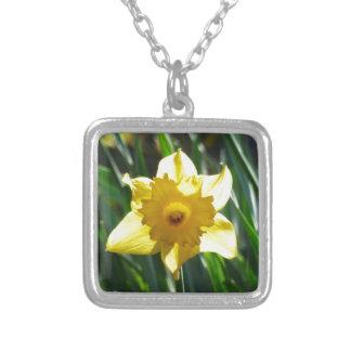 Collar Plateado Narciso amarillo 03.0.g