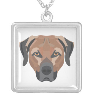 Collar Plateado Perro Brown Labrador del ilustracion