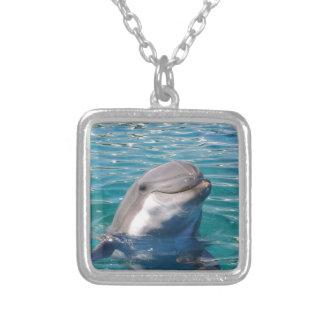 Collar Plateado Sonrisa del delfín