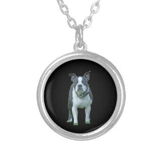 Collar Plateado Terrier 1b de Boston