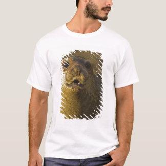 Colonia de grajos del sello de elefante cerca de camiseta