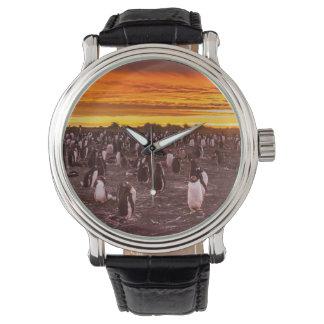 Colonia en la puesta del sol, Malvinas del Reloj