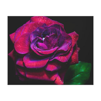 Color de rosa eléctrico impresión en lienzo