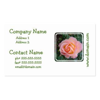 Color de rosa en colores pastel plantillas de tarjeta de negocio