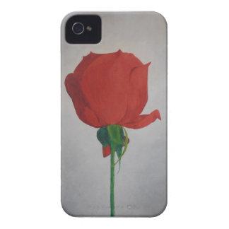 Color de rosa funda para iPhone 4