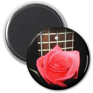 Color de rosa rosado rojo contra tablero del trast imanes