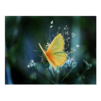 colores de las mariposas del arco iris postal