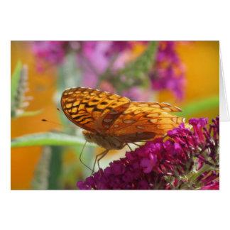 Colores del Fritillary - mariposa Tarjeta De Felicitación