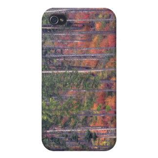 Colores del otoño de bosques en la cascada 5 iPhone 4 cárcasa
