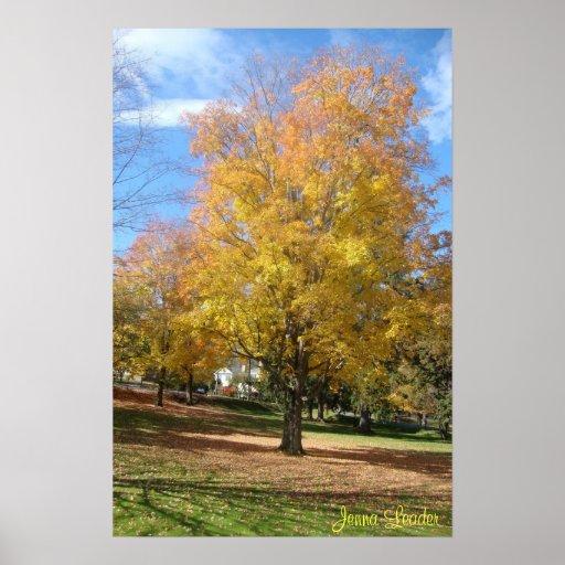 Colores del otoño impresiones
