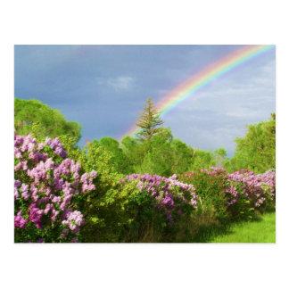 colores en tarjeta de la naturaleza postal
