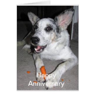 Combate de la zanahoria feliz del aniversario ' tarjeta de felicitación