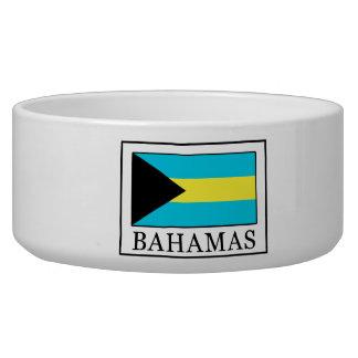 Comedero Bahamas