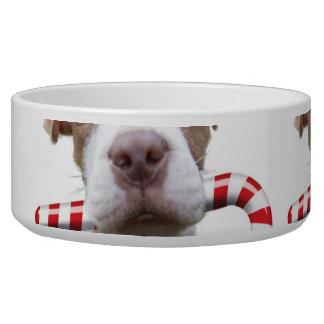 Comedero Pitbull del navidad - pitbull de santa - perro de