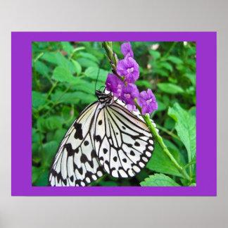 Cometa de papel en la flor púrpura póster