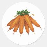 Comida del vintage, verduras; Manojo de zanahorias Pegatina Redonda