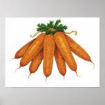 Comida del vintage, verduras; Manojo de zanahorias Posters