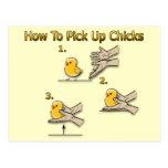 Cómo coger direcciones divertidas de los polluelos tarjetas postales