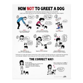 """Cómo no saludar un perro - 8,5"""" x 11"""" aviadores flyer personalizado"""