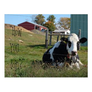 """""""Cómo USTED postal de la vaca del doin'?"""""""