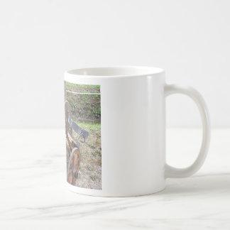Compitiendo con malhumorado usado en competir con taza de café