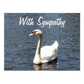 Con el cisne del blanco de la condolencia postal