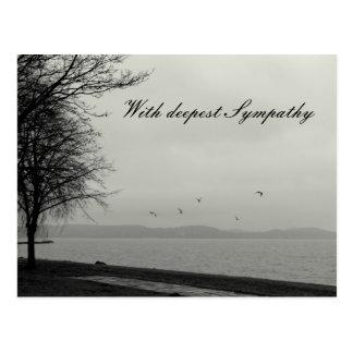 Con la condolencia más profunda tarjetas postales