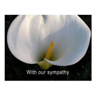 Con nuestra condolencia tarjetas postales