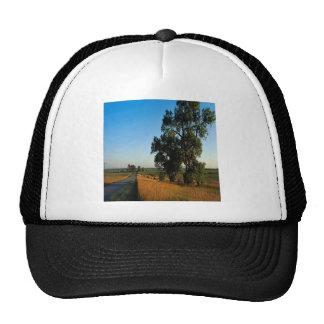 Condado de los granjeros del camino de la naturale gorras