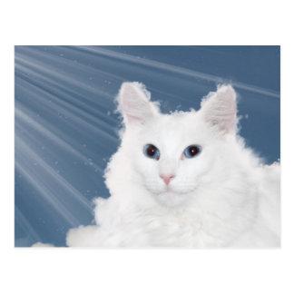Condolencia de la pérdida del gato del mascota postal