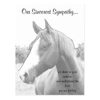 Condolencia del veterinario del caballo postal