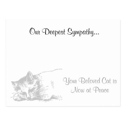 Condolencia del veterinario del gato tarjeta postal