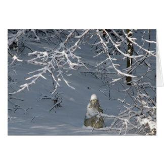 Condolencia - invierno Madonna Tarjeta