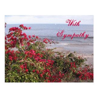 Condolencia Malibu Postal