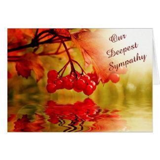Condolencia roja de la reflexión de la baya tarjeta
