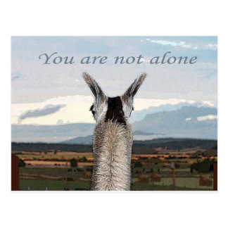 Condolencia: Usted no es llama sola Tarjeta Postal